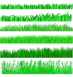 grass green background set vector image