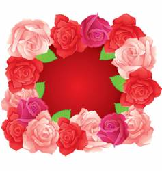 roses banner vector image