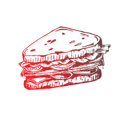 sketch of sandwich with tomatoes and herbs vector image