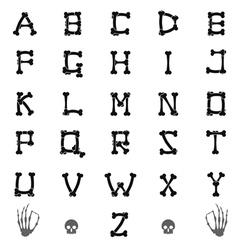 ABC skeleton vector image