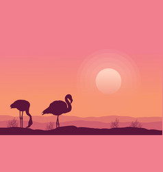silhouette flamingo scenery collection stock vector image vector image