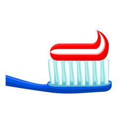 colorful cartoon toothbrush toothpaste vector image