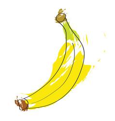 fresh yellow banana fruit vector image