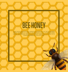 Honeybee on honeycomb retail banner vector