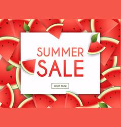 summer sale banner poster flyer slices vector image