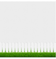 white fence with green grass and transparent vector image
