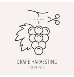 Simple Logo Template Wine Harvesting vector image