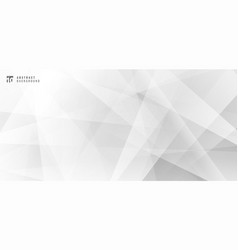 abstract modern design white and gray geometric vector image