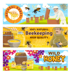 beekeeping and wild honey on apiary vector image