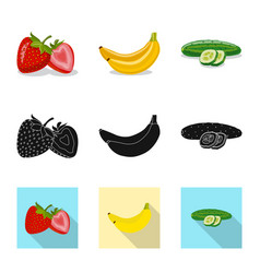 Design of vegetable and fruit icon vector