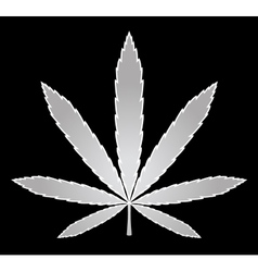 Medical marijuana Cannabis vector image