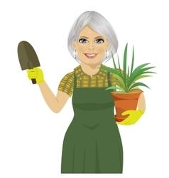 Senior gardening woman holding Chlorophytum plant vector