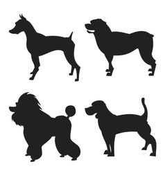 Set of dogs silhouette vector image
