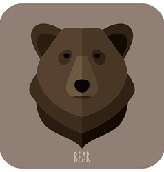 Animal Portrait With Flat Design Brown Bear vector image