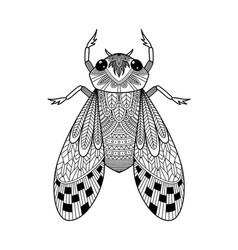 Adult doodle antistress coloring book page beetle vector