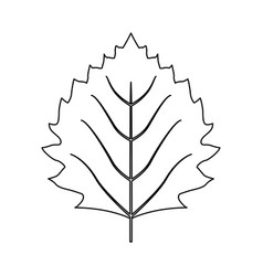 leaf nature plant simple cartoon flat style vector image