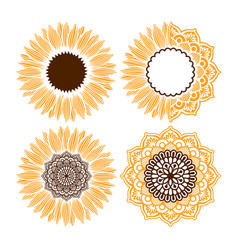 sunflower mandala vector image