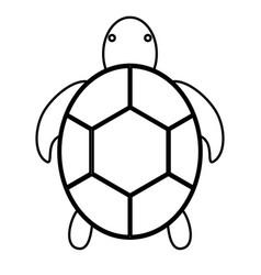 Tortoise icon image vector