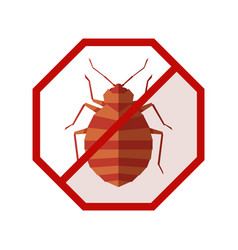 Flat geometric sign with bedbug vector