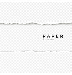 horizontal seamless torn paper edge rough broken vector image