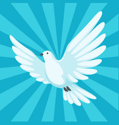 background with white dove beautiful pigeon faith vector image vector image