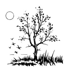 tree silhouette sketch vector image vector image