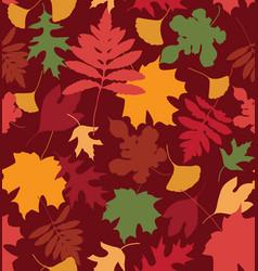 Colorful leaves dark vector
