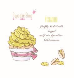 hand drawn cupcake pistachio flavor vector image