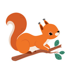 Red fluffy squirrel with bushy tail sitting on vector