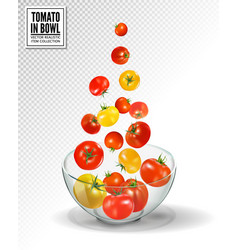 Tomatoes falling into glass bowl isolated vector