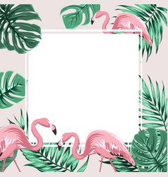 Tropical border frame banner leaves flamingo birds vector