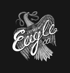 aquila symbol of freedom wild eagle predatory vector image