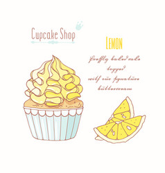 Hand drawn cupcake lemon flavor vector