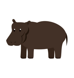 Hippo wild animal vector