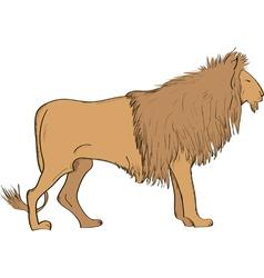 Lion- vector image