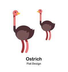 Ostrich flat icon vector