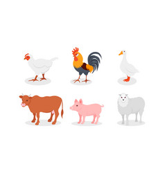 Poultry and other farm animals in the village vector