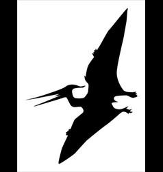 Pterodactyl flying dinosaur vector
