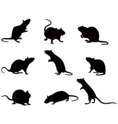 silhouettes rats vector image