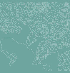 Topographic map color and fun lines vector