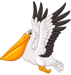 cartoon pelican flying vector image