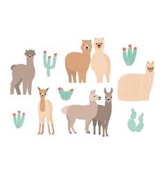 Cute lama alpaca and cactuses set hand drawn vector