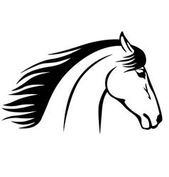 horse muzzle vector image