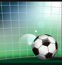 Soccer ball in the soccer gate vector