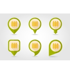 Spikelets of wheat flat mapping pin icon vector image