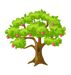 summer tree with apples and leaves seasonal vector image