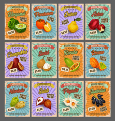 tropical fruits price cards exotic food vector image