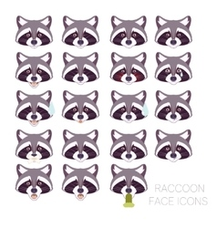 Set of raccoon faces vector image