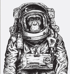 Hand Drawn Monkey Astronaut vector image vector image