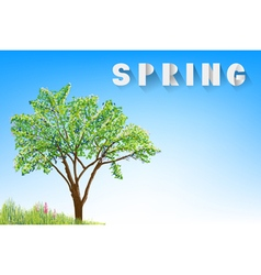 tree and grass with flowers vector image vector image